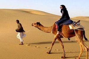 camel desert safari Jaisalmer
